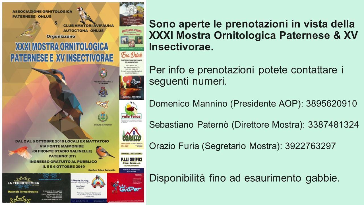 Calendario Mostre Ornitologiche 2019 Sicilia.Home Page Club Amatori Avifauna Autoctona Onlus Club